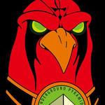 Hawk - Band